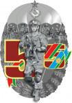 Знак 55 лет 5 ОБрСпН