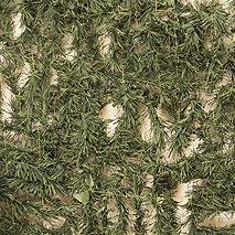 Сеть Трава Маскировочная Папоротник