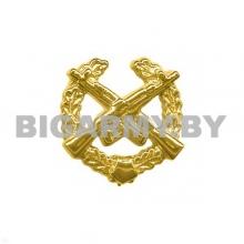 Эмблема Мотострелковые войска пластмассовая с венком