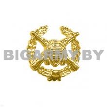 Эмблема Пограничных войск пластмассовая с венком