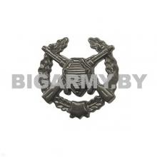 Эмблема Пограничных войск защитная пластмассовая с венком