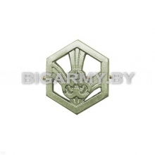 Эмблема петлица войска РХБЗ металлическая