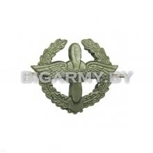 Эмблема петлица ВВС металлическая