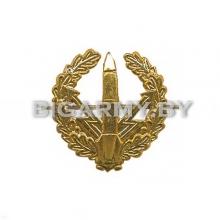 Эмблема петлица РВСН металлическая