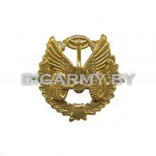 Эмблема петлица Автомобильные войска металлическая